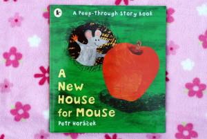 Nový domek pro myšku