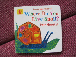 where-do-you-live-snail