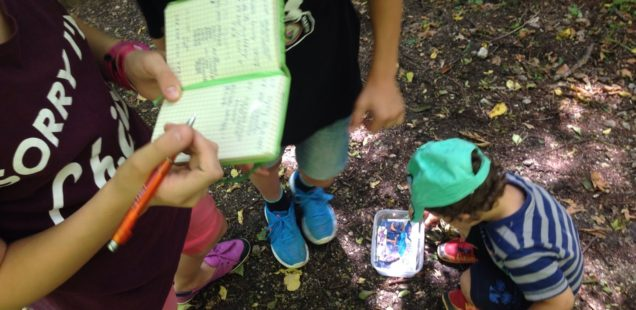 antimama_geocaching