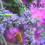 Prečítané leto: knižky o rastlinkách (2. týždeň)